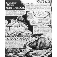 Canoe country Sketchbook Prints